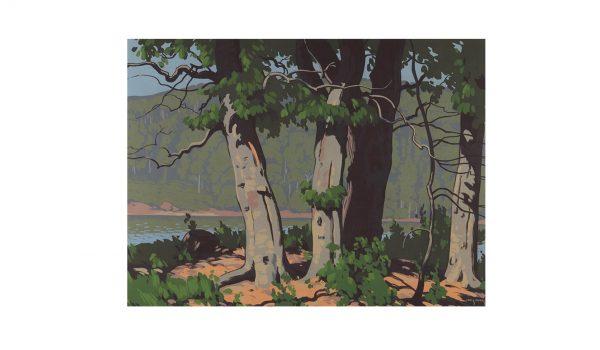 haines-beechwoods-1943-noframe